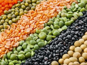 Pulses and Lentils Wholesale