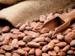 Wholesale Superfoods Cacao Beans