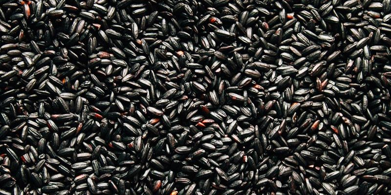 Wholesale Rice and Pasta, Black Rice